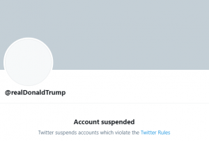 MAGAcaust: Donald Trump Has Been Suspended From Twitter