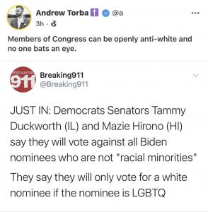 WHITE LIVES MATTER: Dem Senators Openly Spew Anti-White Hatred In Senate