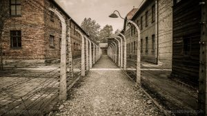 CounterPunch editor calls for covid internment camps, forced medical kidnapping of the unvaccinated