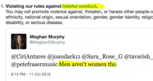 Congressman Censored on Twitter for Saying That Jew Tranny is a Man